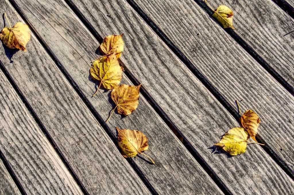 Des feuilles mortes jaunes sur une terrasse en bois