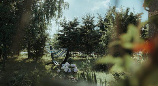 Un jardin avec des fleurs et un hamac rayé vert et blanc