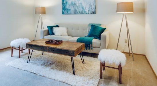 petit-salon-maison-decoration-couleurs-lampes-mobilier